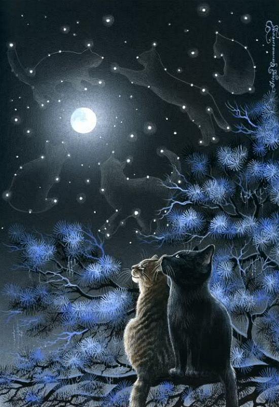 Вдохновение приходит ночью